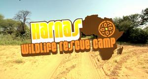 Harnas - Die Buschklinik
