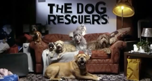 The Dog Rescuers