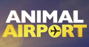 Animal Airport - Wenn Tiere reisen