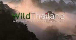 Wildes Thailand