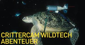 Crittercam WildTech Abenteuer