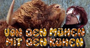 Von den Mühen mit den Kühen
