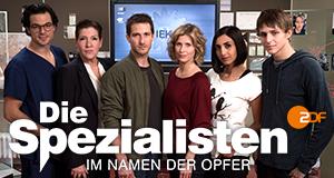 Die Spezialisten Im Namen Der Opfer Staffel 1