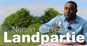 Nelson Müllers Landpartie