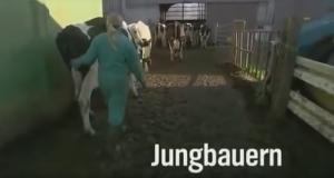 Jungbauern