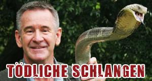Tödliche Schlangen