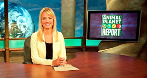 Animal Planet Report