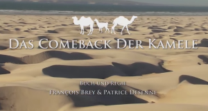 Das Comeback der Kamele