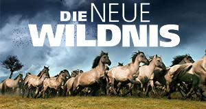 Die neue Wildnis