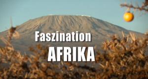 Faszination Afrika