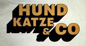 Hund, Katze & Co.