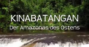 Kinabatangan, der Amazonas des Ostens