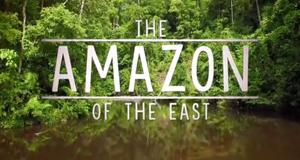 Borneos geheime Wildnis