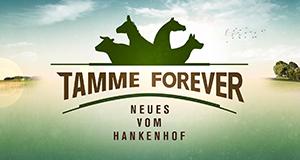 Neues vom Hankenhof - Tamme forever!