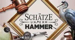 Schätze unterm Hammer - Ein Auktionator schlägt zu