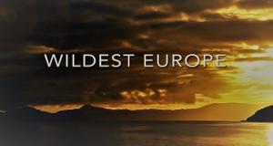 Europa ungezähmt