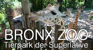 Bronx Zoo - Tierpark der Superlative
