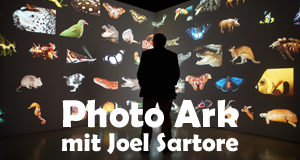 Photo Ark mit Joel Sartore