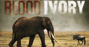 Blutiges Elfenbein - Wilderern auf der Spur