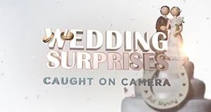 Crazy Weddings - Die besten Hochzeitsclips