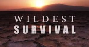 Wildes Überleben