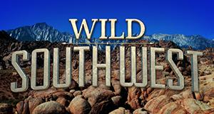 Wildes Amerika: Ungezähmter Südwesten