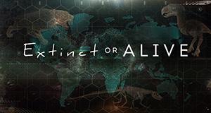Extinct or Alive - Ausgestorben oder nicht?