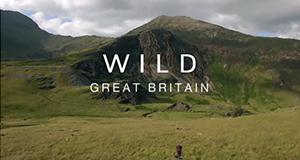 Wildes Großbritannien