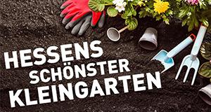 Hessens schönster Kleingarten