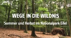 Die Eifel - Wege in die Wildnis