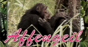Affengeil - Tiere ganz privat