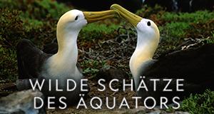 Wilde Schätze des Äquators