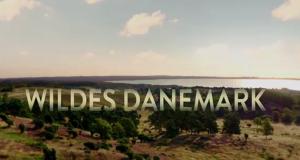 Wildes Dänemark