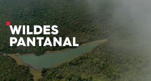 Wildes Pantanal