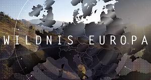 Wildnis Europa