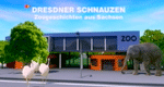 Dresdner Schnauzen