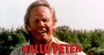Hallo Peter!