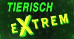 Tierisch Extrem - Die Top 10...