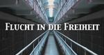 Flucht in die Freiheit