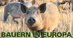 Bauern in Europa