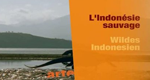 Wildes Indonesien