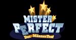 Mister Perfect - Der MännerTest