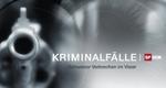 Kriminalfälle - Schweizer Verbrechen im Visier