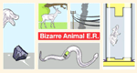 Bizarre Animal E.R.