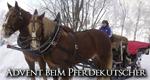 Advent beim Pferdekutscher