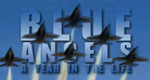 Blue Angels - Loopings in Perfektion