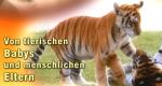 Von tierischen Babys und menschlichen Eltern