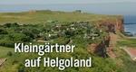 Kleingärtner auf Helgoland