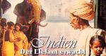 Indien - Der Elefant erwacht
