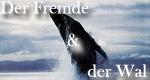 Der Fremde und der Wal